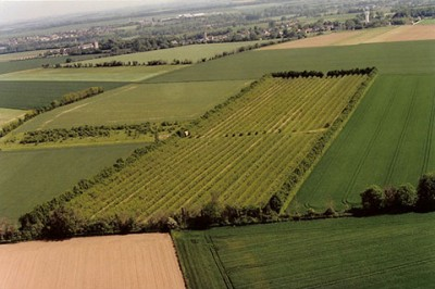 Aerial view of Terre des Presseaux orchards
