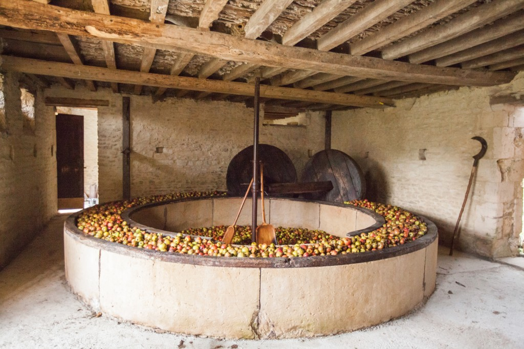 An apple mill driven by a horse
